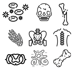 bone icon group
